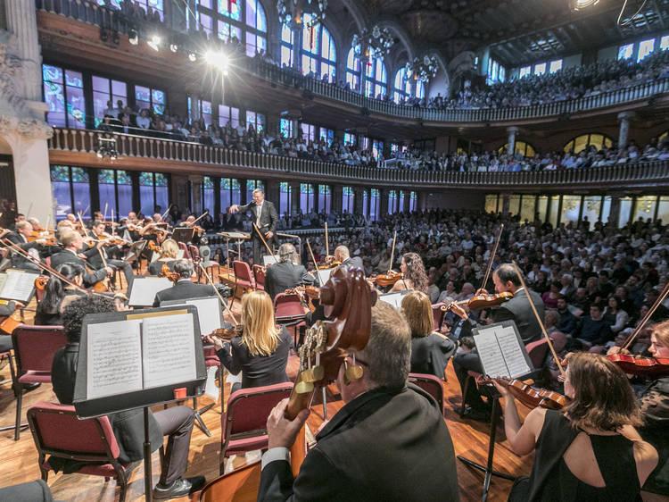 Simfònics al Palau: La Octava de Beethoven