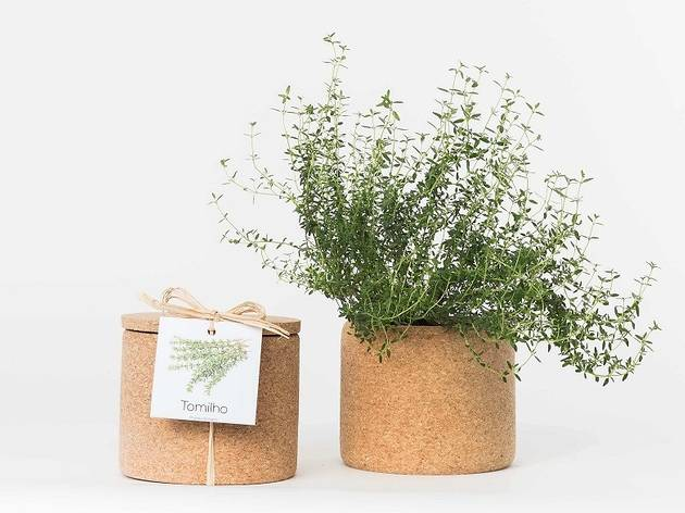 Grow Cork de tomilho da Life in a Bag