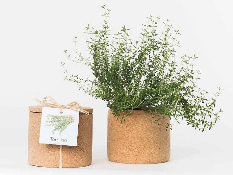 Os melhores presentes sustentáveis para oferecer no Dia dos Namorados