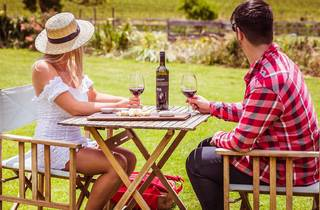 McIvor Estate wine tasting Mitchell Shire