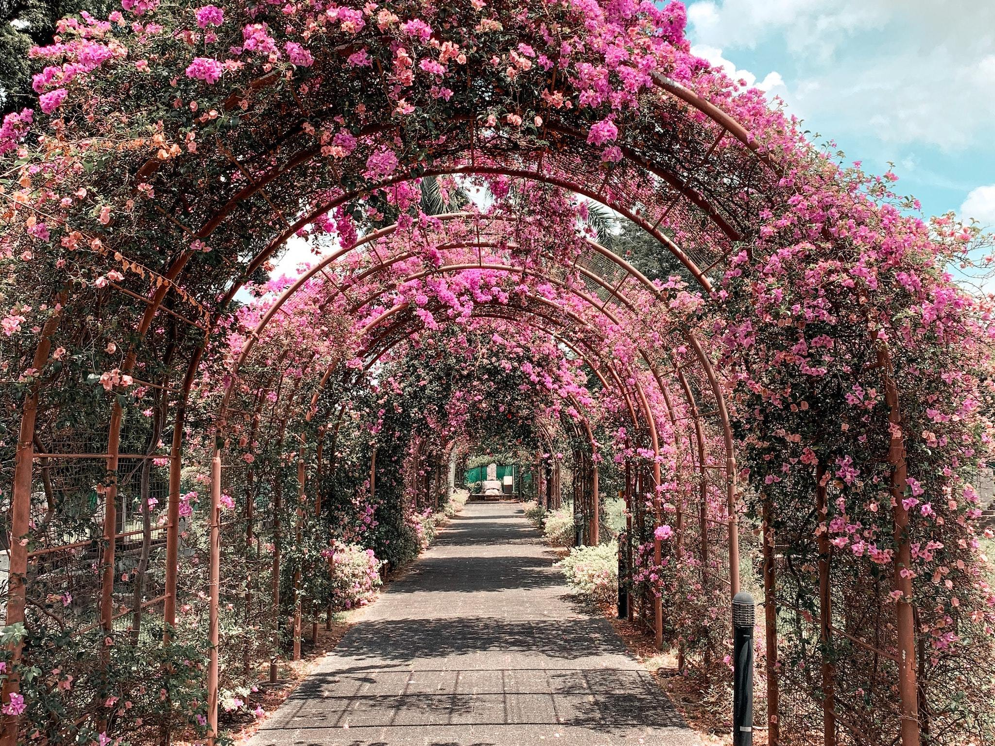 20 Most Romantic Places In Singapore