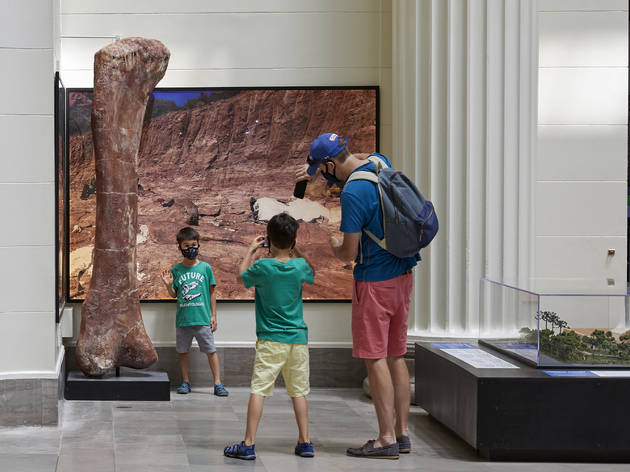Chicago museums can reopen under newly relaxed COVID-19 restrictions