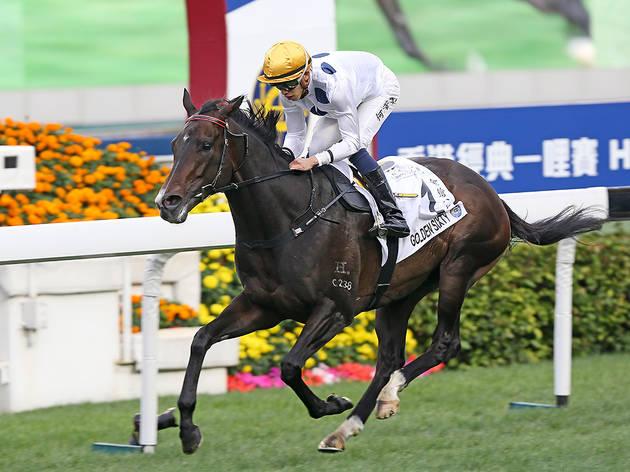 The Hong Kong Jockey Club