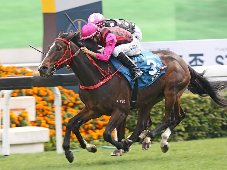 Hong Kong Jockey Clubs' Chinese New Year Race Day