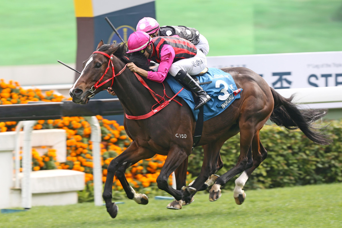 The Stewards' Cup, Centenary Sprint Cup, and HK Classic Mile horse race