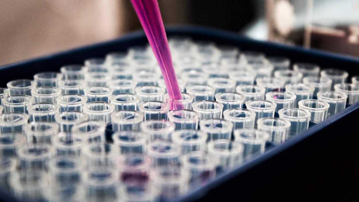 新型コロナウイルス感染症ワクチン接種までのタイムラインを公開