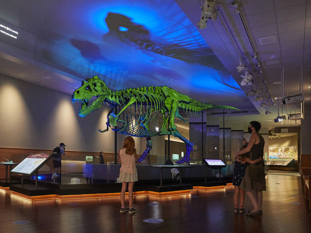 Shedd Aquarium and the Field Museum have already announced reopening plans