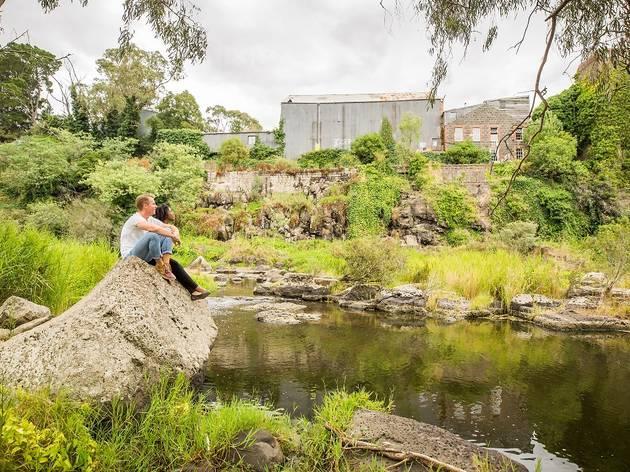 Buckley Falls, Barwon River, Geelong