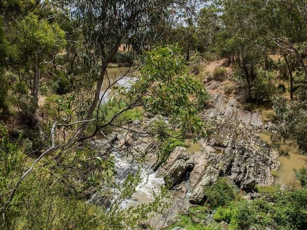 Plenty Gorge Parklands