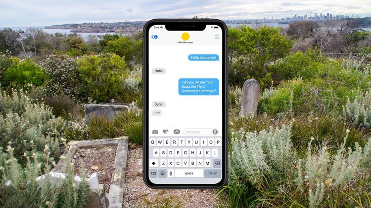 A view of the quarantine cemetery with a superimposed mobile phone mid text conversation