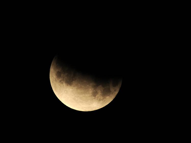 November 19: partial lunar eclipse