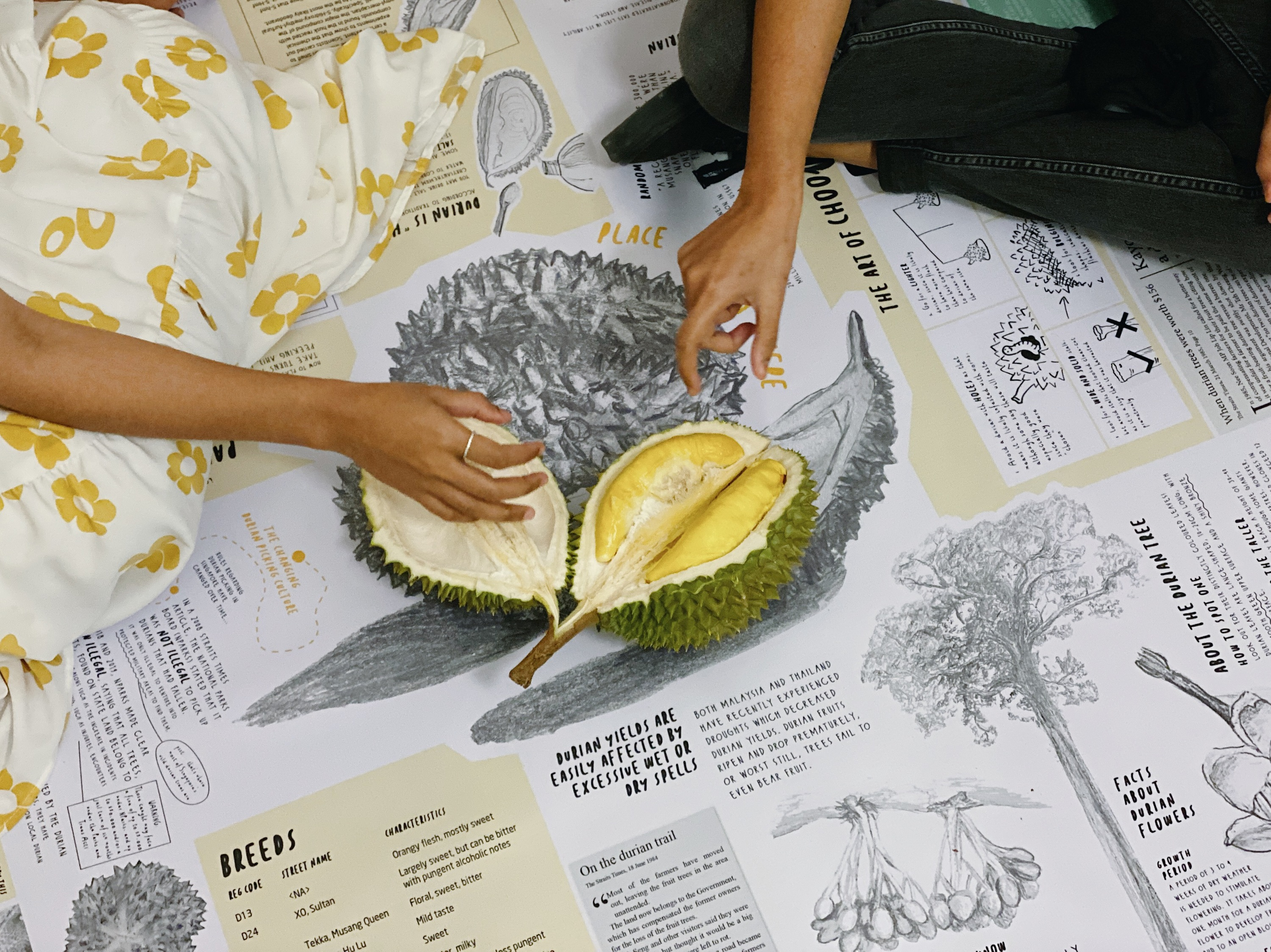Artist spotlight: an interactive picnic that reconnects people with local durian culture