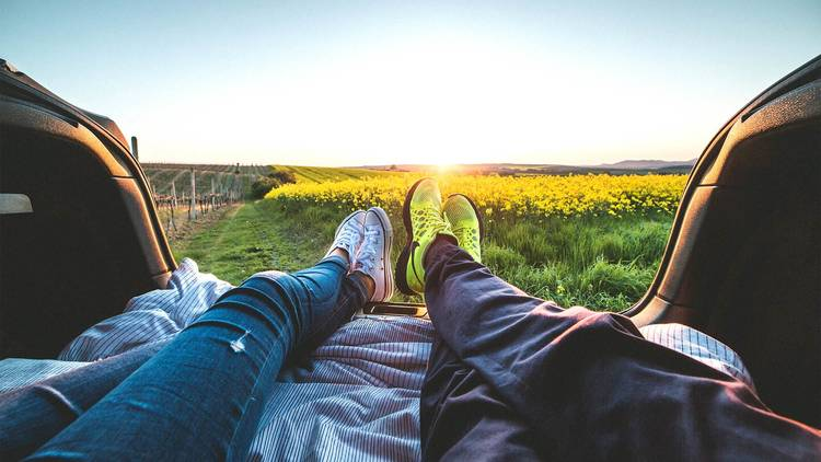 Couple on a road trip date overlooking a field of yellow flowers