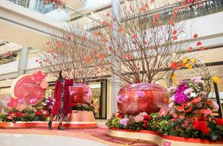 IFC Mall beautiful: blossom of fortune