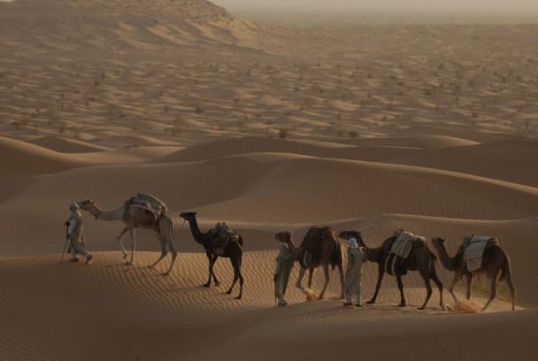 Maravillas Ocultas de África