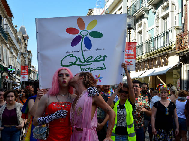 LGBT+, Queer Tropical, Colectivo de apoio a pessoas LGBT