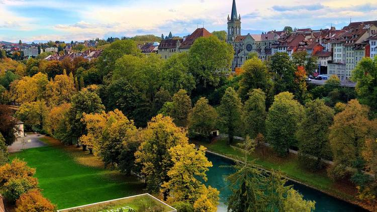 Trees and buildings in Bern, Switzerland.