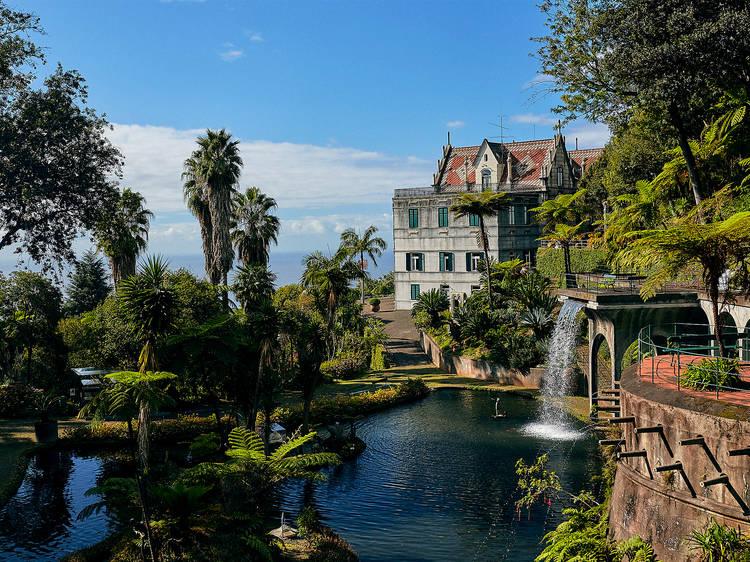 Visitar o Jardim Tropical Monte Palace
