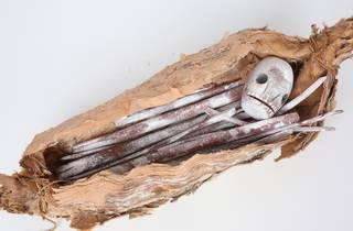 The Blake Prize 202, Jack Nawilil 'Bininj (human) bones'