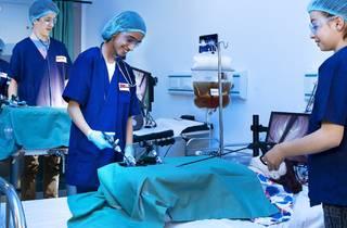 DreamCity surgeons (Photograph: Supplied)