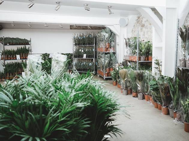 Maison Bouture. Tienda pop up de plantas
