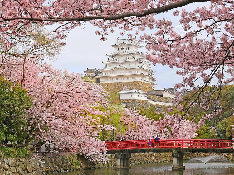 Himeji Castle, Hyogo prefecture