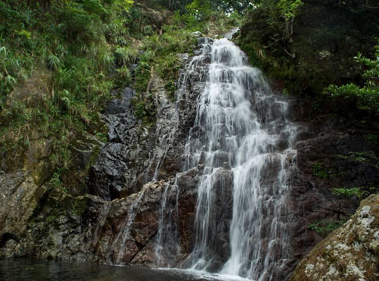 梧桐寨瀑布:謐靜瀑布