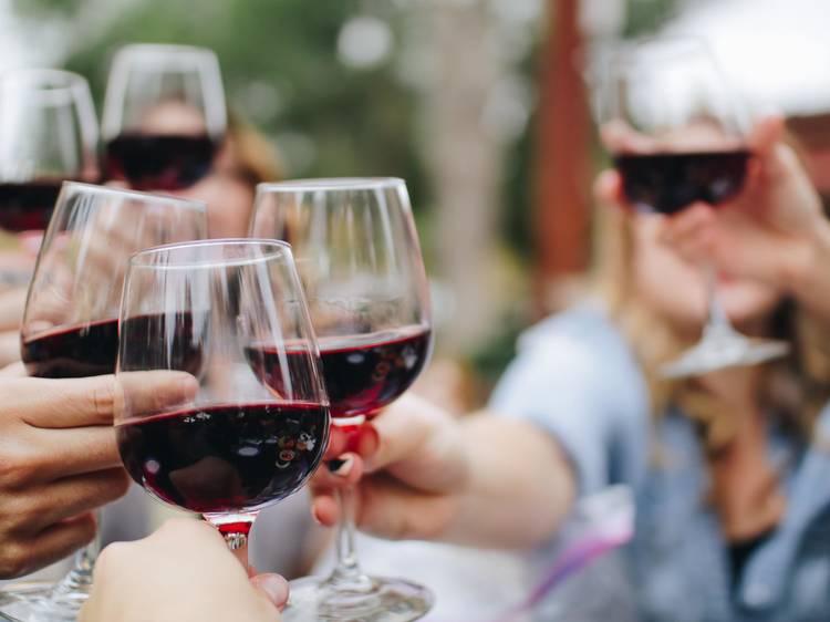 Experiência: vinho e Natureza