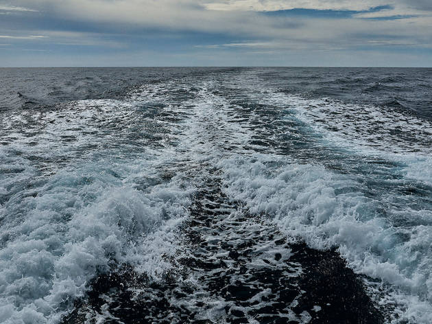 Passeio de barco até às Ilhas Desertas