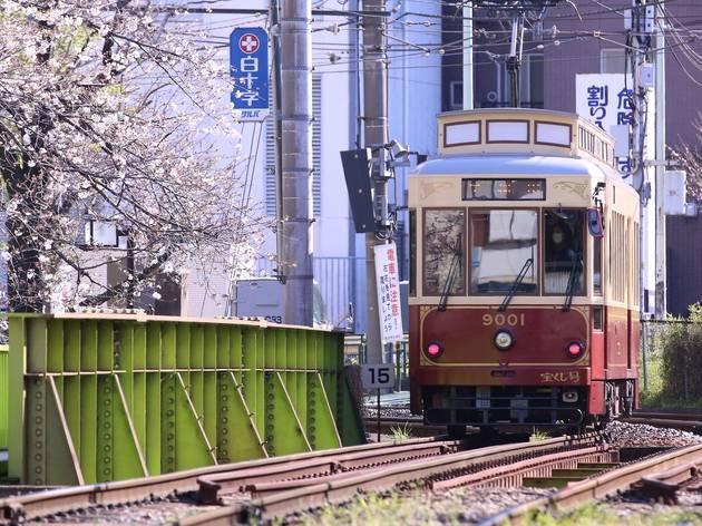 Toden Arakawa Line Sakura Tram