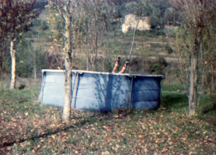 Una exposició de debó, de Martí Anson