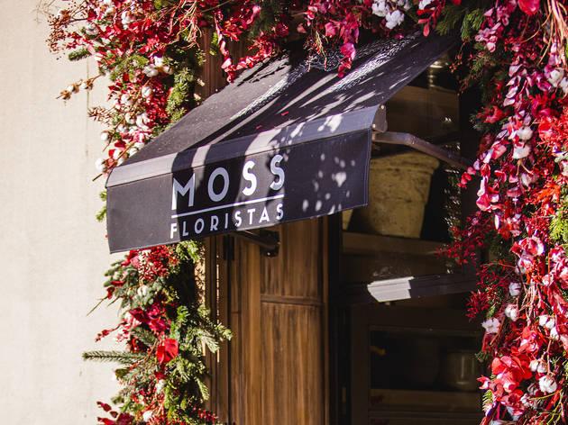 Moss Floristas. Floristería