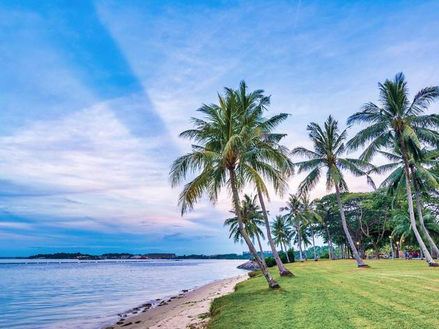 The best parks and beaches for picnics in Singapore