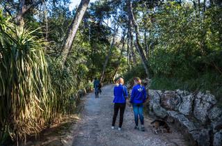 Parque Palmela