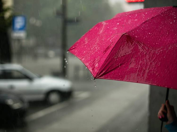 You take an umbrella everywhere – even when it's just drizzling