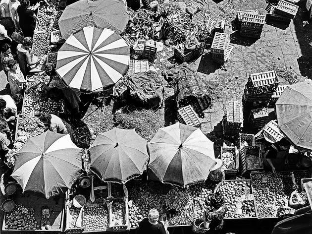 Mercat de la Boqueria, 1966.