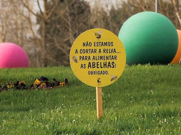 © Câmara Municipal de Lousada