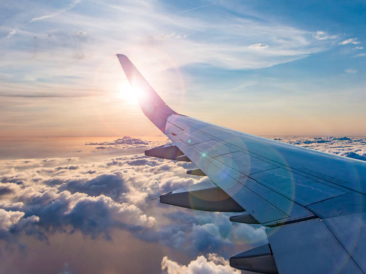 I've taken 140 flights in the past year. Here's what I've learned