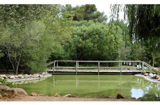 Parque Urbano Bosque dos Gaios