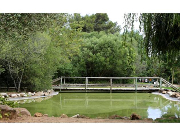 Parque, Jardim, Estoril, Parque Urbano Bosque dos Gaios