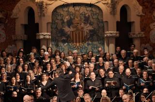 Orquestra Simfònica del Vallès, Palau de la Música