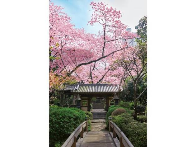 高輪 花香路 日本庭園