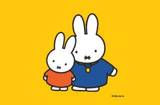 Miffy illustration