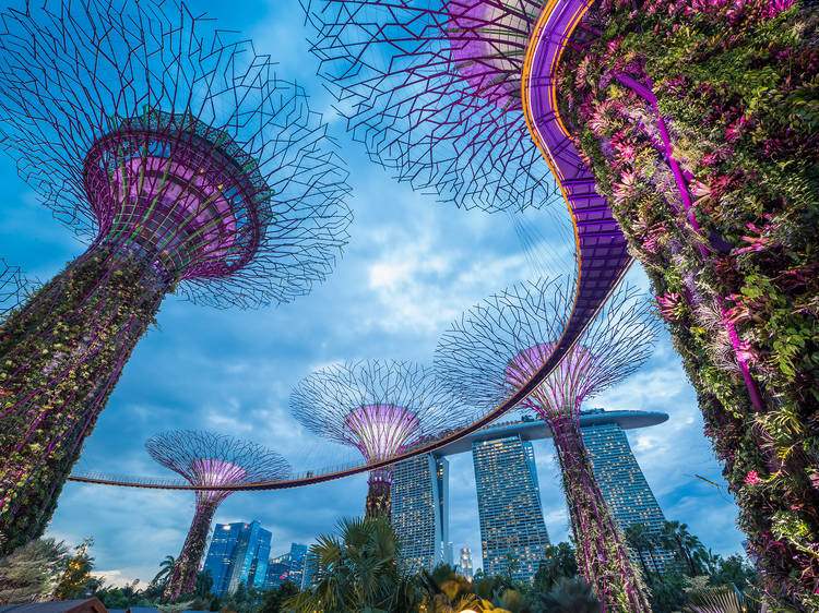 Australia may start a quarantine-free 'travel bubble' with Singapore