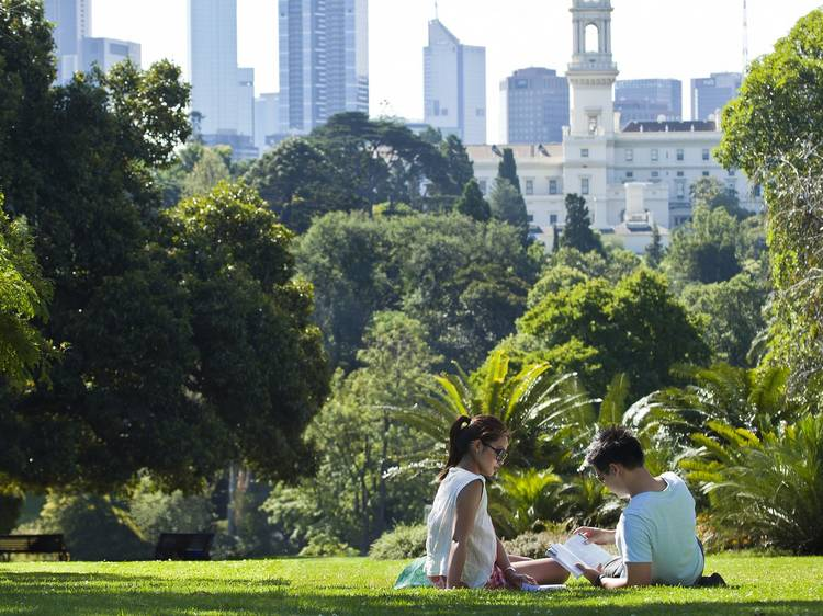 Gather your mates for a day in the park