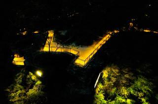 Katoomba Falls Reserve Trail lit up