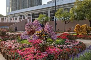 Hong Kong Flower Show 2021