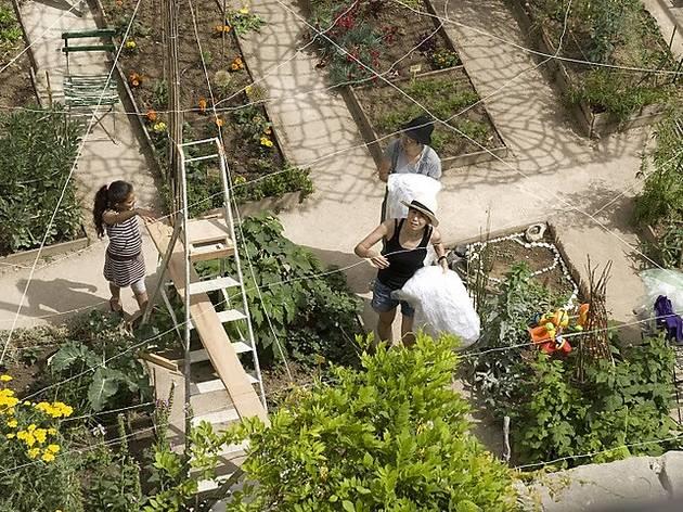 Les 11 meilleurs jardins partagés de Paris et du Grand Paris