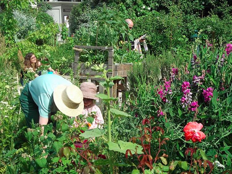 Le Jardin Poireau Agile (10e)