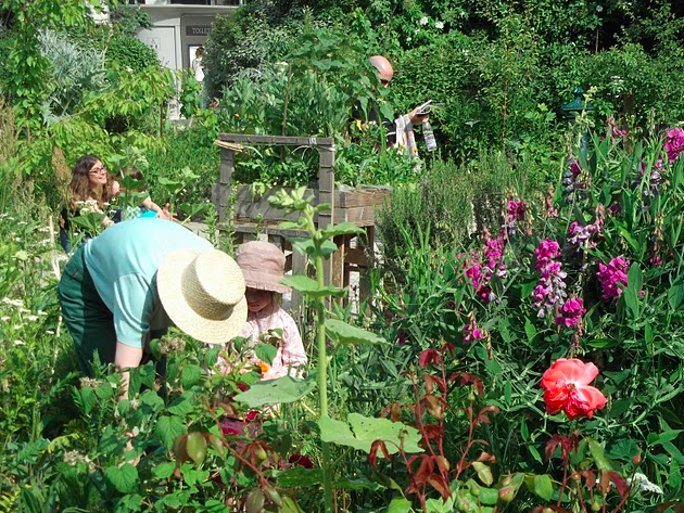 © Le Jardin Poireau Agile